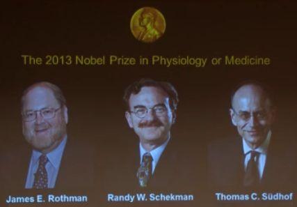 Los ganadores del Nobel de Medicina del año 2013