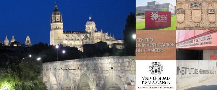 Damero de imágenes de Salamanca y sus instituciones científicas
